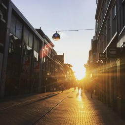 The main walking street is about a 10 minute walk from the Centraal Station and Wellness Leiden.